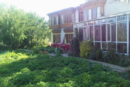 Khamzang Guest House - Leh - Rumah Tamu