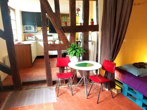 Cosy Apartment by the Marais de Bourges