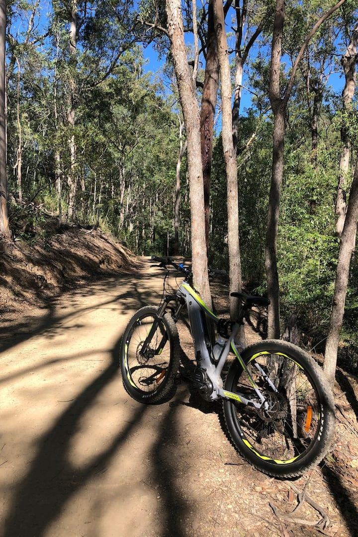 Mt Coot-Tha dirt trails