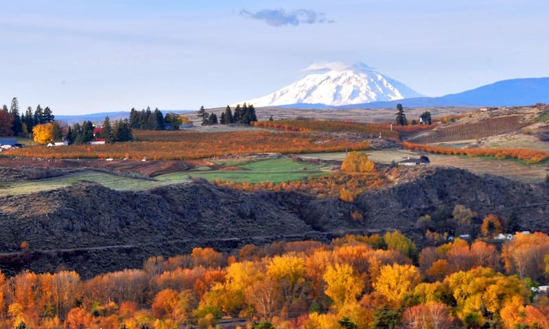☆ Welcome To The Yakima Valley ☆