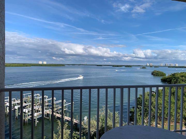 Spectacular Views!!  Overlooking beautiful Estero Bay!