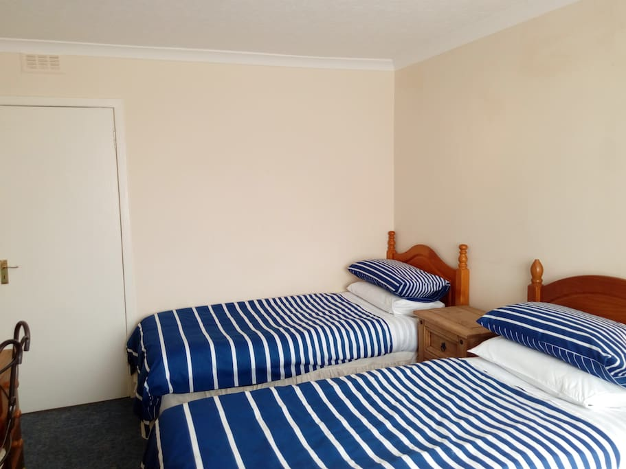 Twin room, there is also a room with a king size bed.