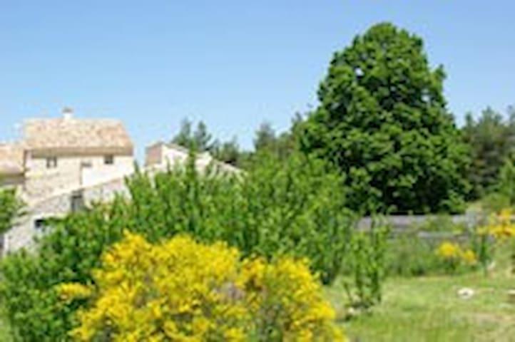 Entre Luberon et Ventoux - Gîte Le Tilleul - Sault - Casa