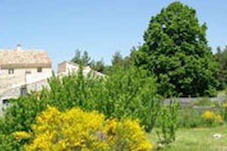 Entre Luberon et Ventoux - Gîte Le Tilleul - Sault