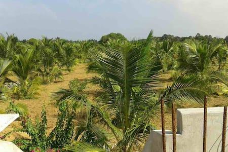 Calming atmosphere in a Sri Lankan village