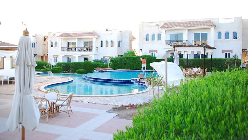 Sharks Bay: One bedroom pool view resort apartment