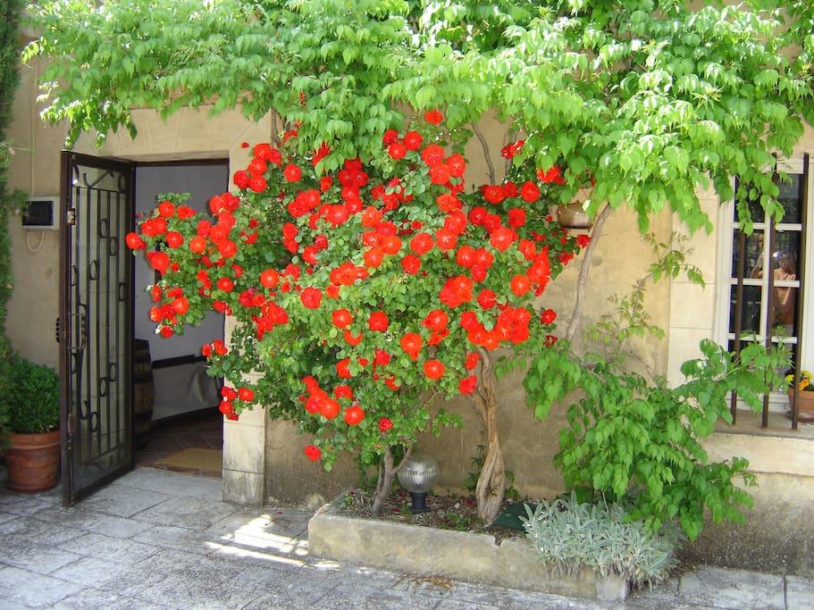 Accès indépendant extérieur de la chambre Lavande donnant sur la terrasse