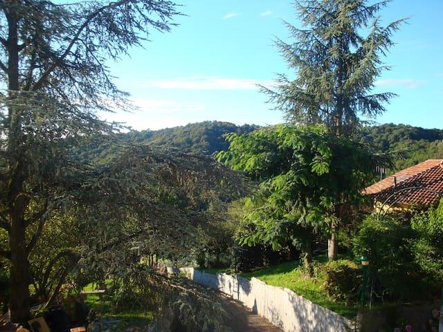 Affacciati sul bosco del Vaj - Castagneto Po - Villa