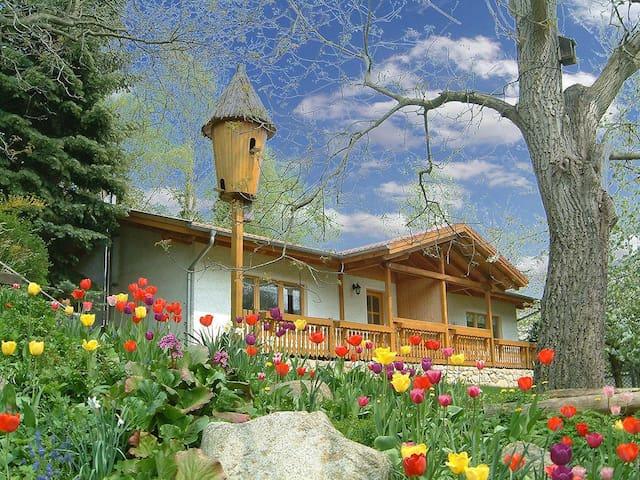 Harzer Feriengarten - Ferienhaus mit FeWo 2