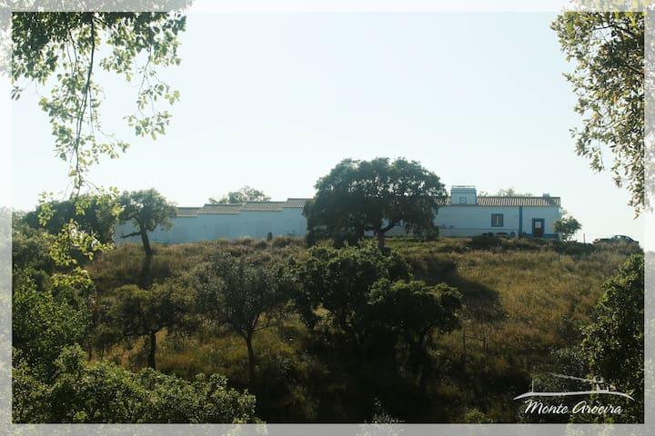 Monte Aroeira   Country House at Alentejo Coast 6 - Santiago do Cacém