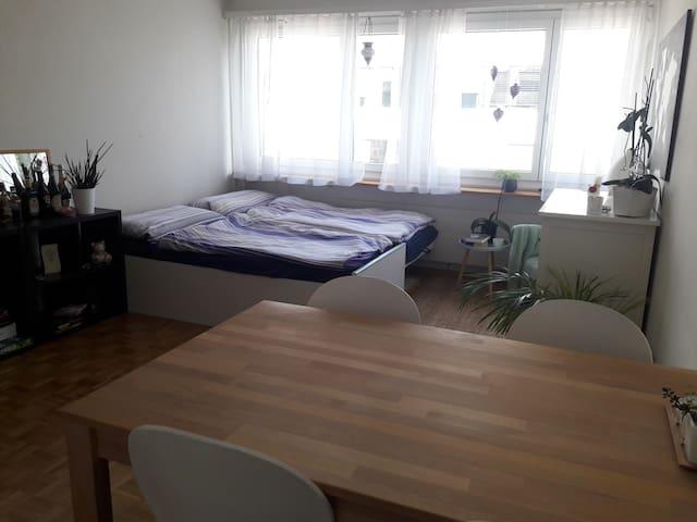 cosy 1-bedroom apartment near the Messeplatz