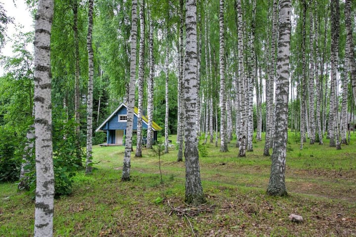Forest Spirit Eco House