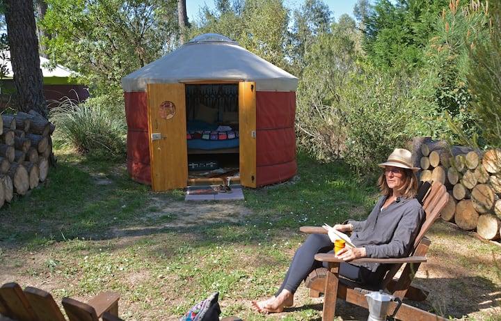 A Camp Tamanco Yurt
