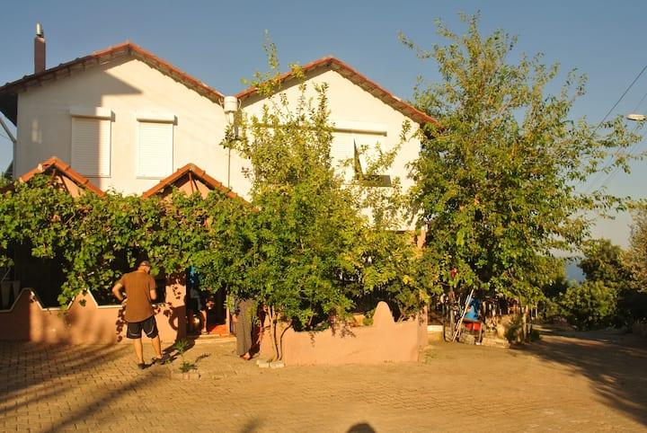 M-D Köy Evi 1