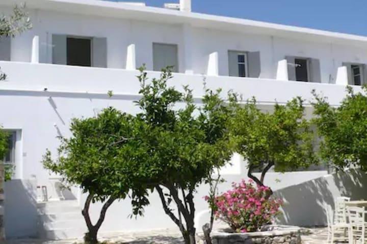 Anezina Hotel, Drios, Paros