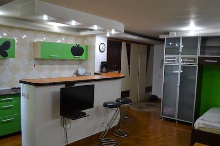 Muncii- cosy and beautiful studio - București - 公寓