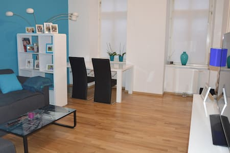 Newly renovated and centrally located appartment - Вена