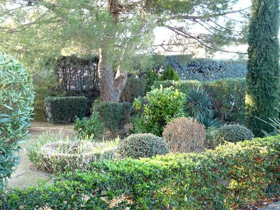 Jardin devant la résidence