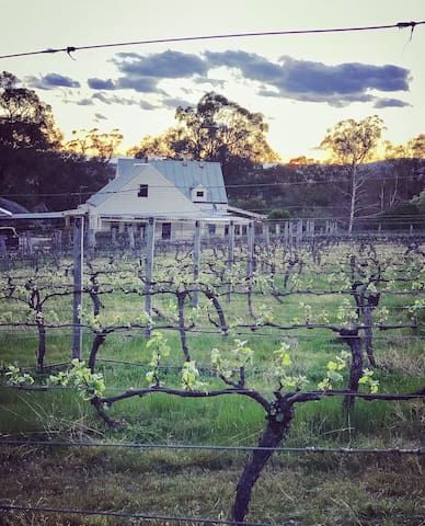 Surrounded in an idyllic setting of 16 acres, by a picturesque working Vineyard