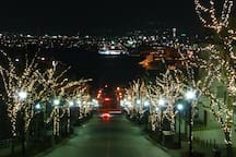 "The Illuminated Sloping Streets and Buildings : ""Hachiman - Zaka_Slope"",: In winter (December to February), the trees lining the sloping streets are strung with lights as part of an event, which creates a romantic vibe."