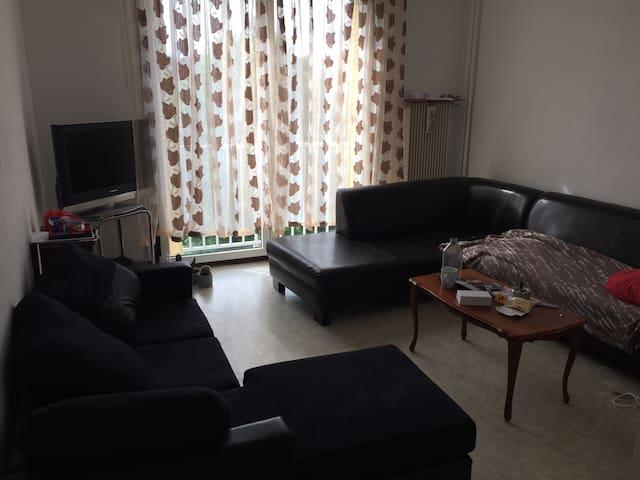 Une chambres à louer - Besançon - Apartment