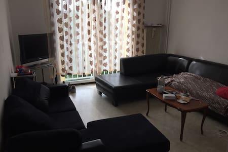 Une chambres à louer - 贝桑松 (Besançon) - 公寓
