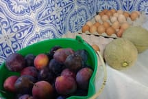 Some of our wonderful fresh products