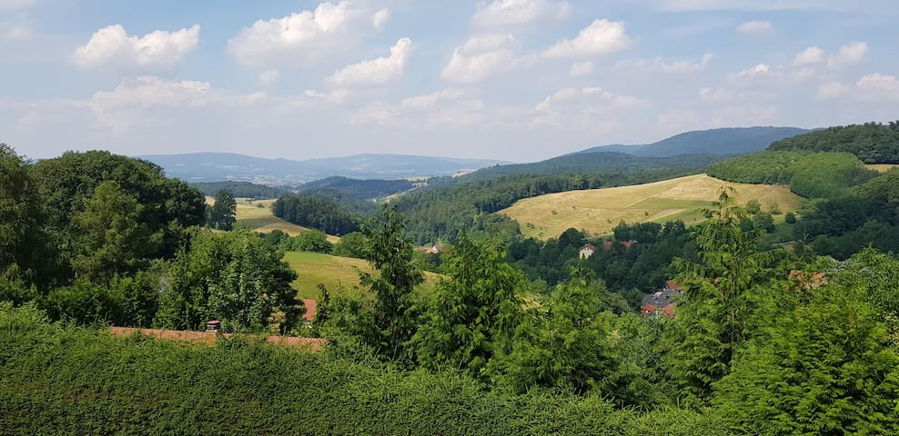 Vöckelsbach,  große Wohnung am Waldrand