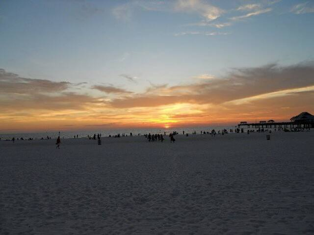 Clearwater Beach Oasis 3