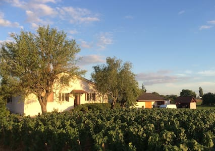 Light, airy house with wide views over vinyards - Savigny-lès-Beaune - Haus