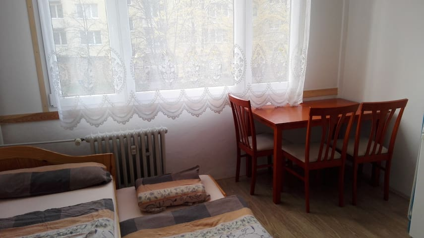 Lovely room in Ceske Budejovice - Ceske Budejovice - Apartament