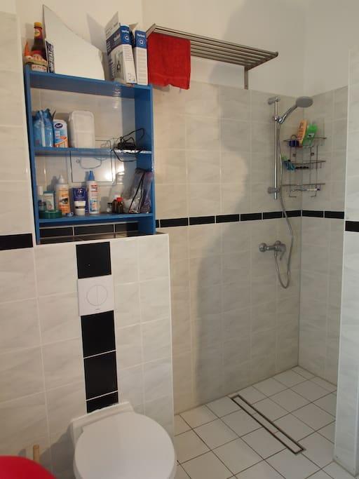 Tageslichtbad mit ebenerdiger Dusche