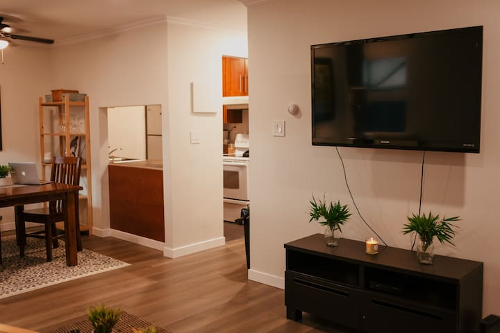 Bright newly renovated 1 bedroom.