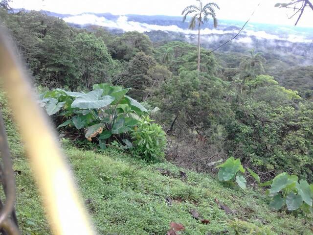 Espectacular chalet rodeado de naturaleza  y paz