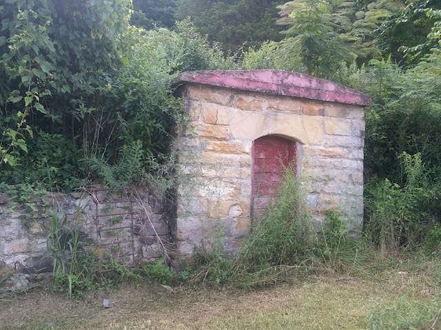 The little root cellar.