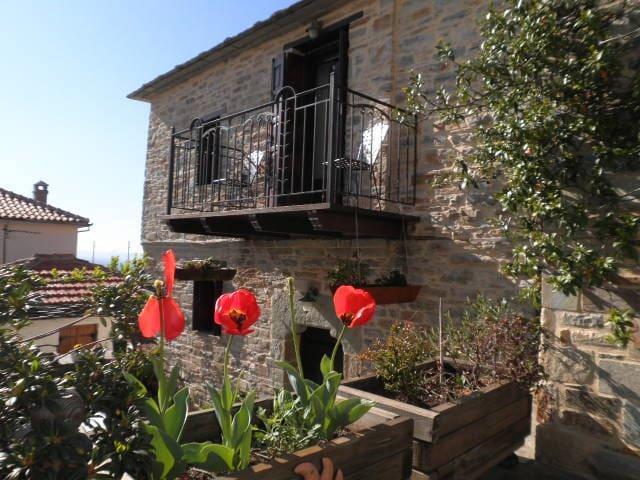 cozy stone house in Lafkos