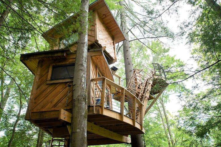 Observatory Tree House