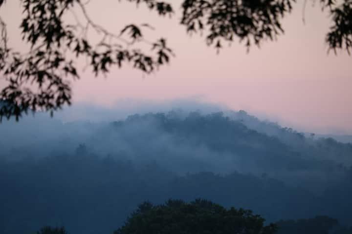 Little Mountain Getaway/Hendersonville/Brevard NC
