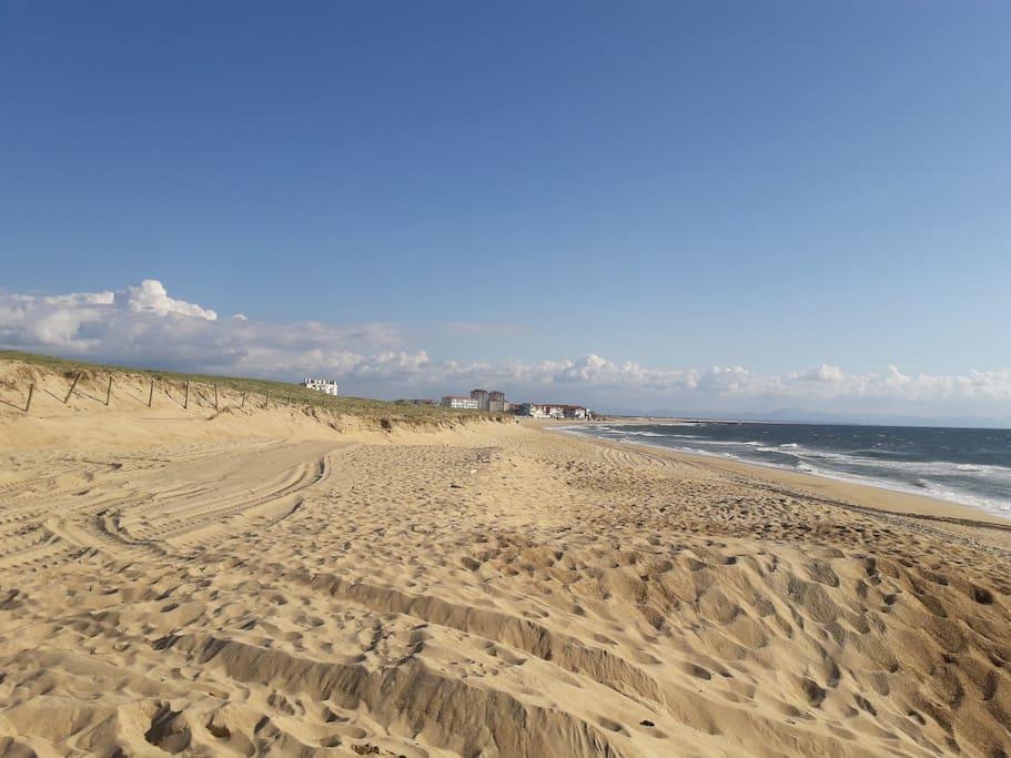 plage de la gravière avec, en arrière plan, la plage centrale d'hossegor