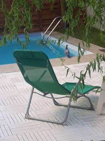 Apartament/curte si piscina