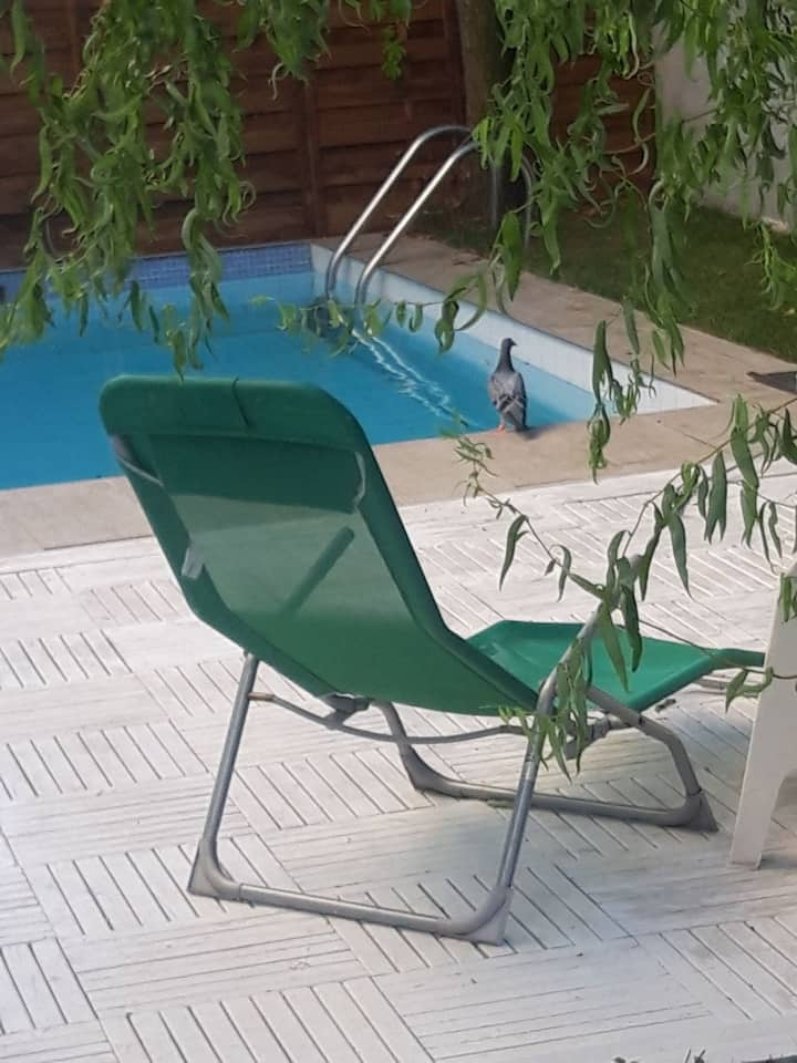 Apartament/curte si piscina