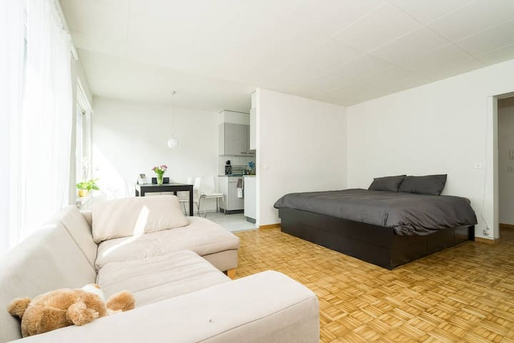 Spacious studio in the heart of ZH