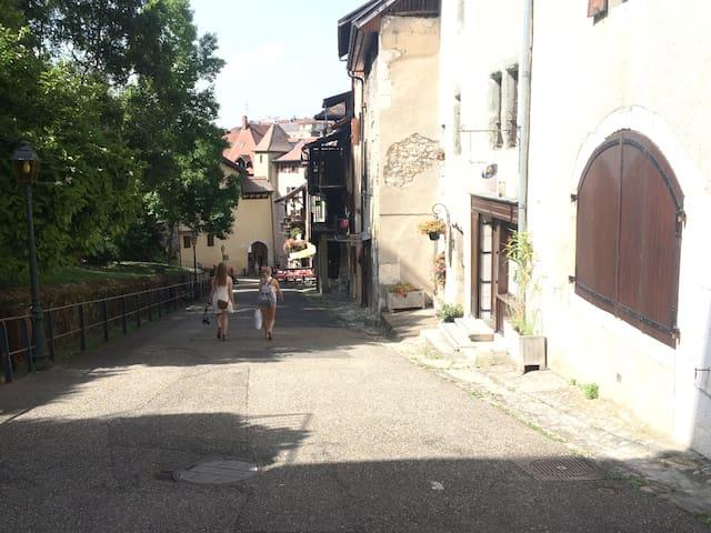 Charmant à Annecy, proche château ! - Annecy - Apartemen