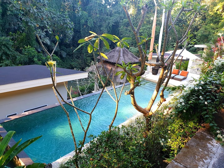 1800sqm luxury zen retreat with pool and jacuzzi