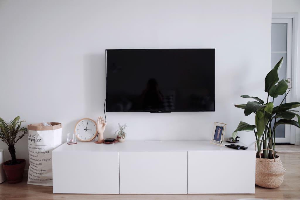 客厅 sony电视