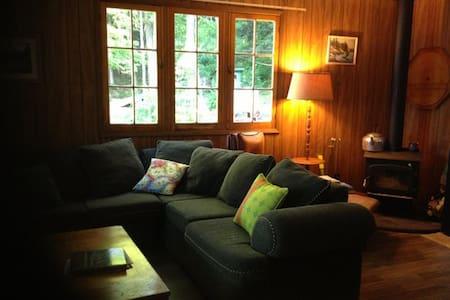 Vintage Haliburton Lakefront Cottage Escape - Algonquin Highlands - Kisház