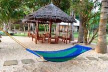 One of the hammocks near shoreline