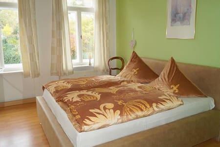 Ferienwohnung Schlossblick Altenburg - Altenburg - 公寓