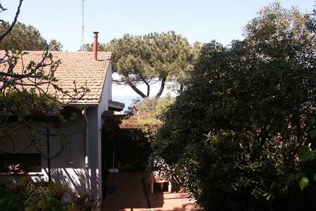 Bungalow with garden and terrace near the sea - San Vincenzo
