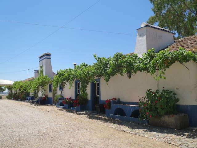 Monte tipicamente alentejano 13 casas ate 65 px - Alcáçovas - Apartment